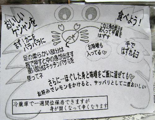 2.豊橋コリアタウン19.JPG