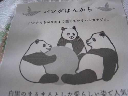2.上野のパンダ5.JPG