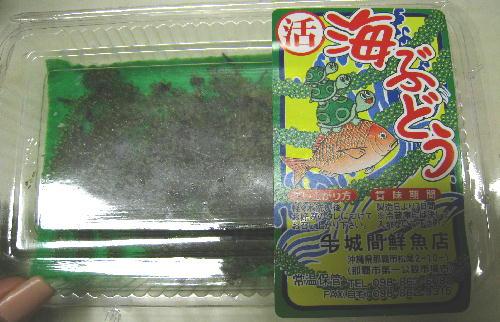 海ぶどう2.JPG