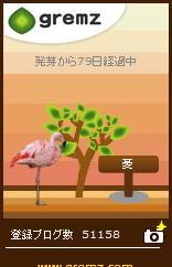 グリムス<はじめてのフラミンゴ>.JPG