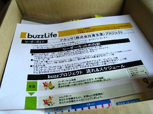 buzzアネッサ.JPG